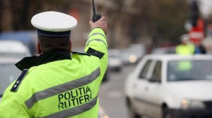 soferi politie rutiera timis
